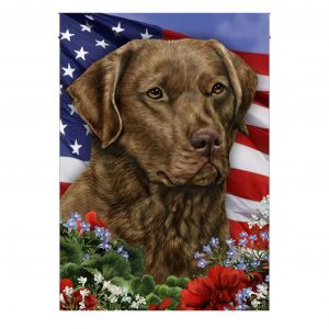 4th of July, Chesapeake Bay Retriever, Garden Flag, Heavy Canvas - Woastuff