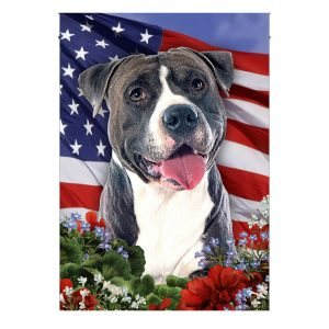 Garden Flag, 4th of July, Pitbull Dog On American Flag, Canvas Material - Woastuff